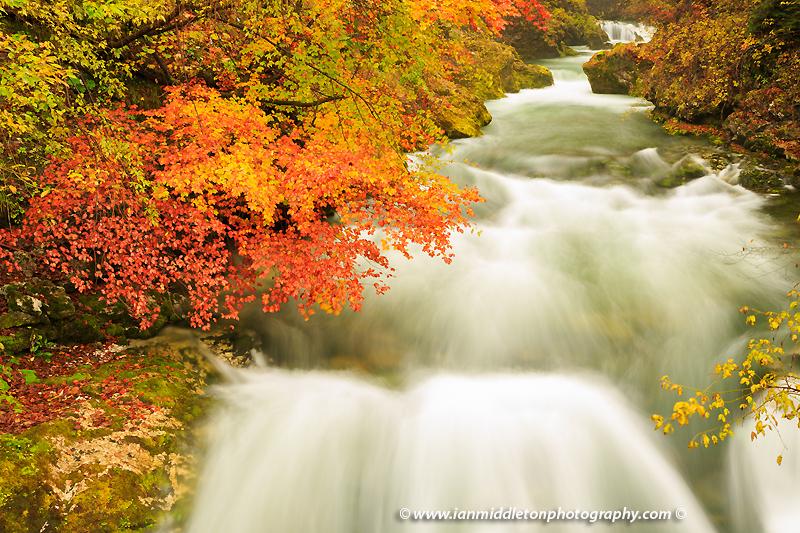 Vintgar Gorge in autumn, Slovenia