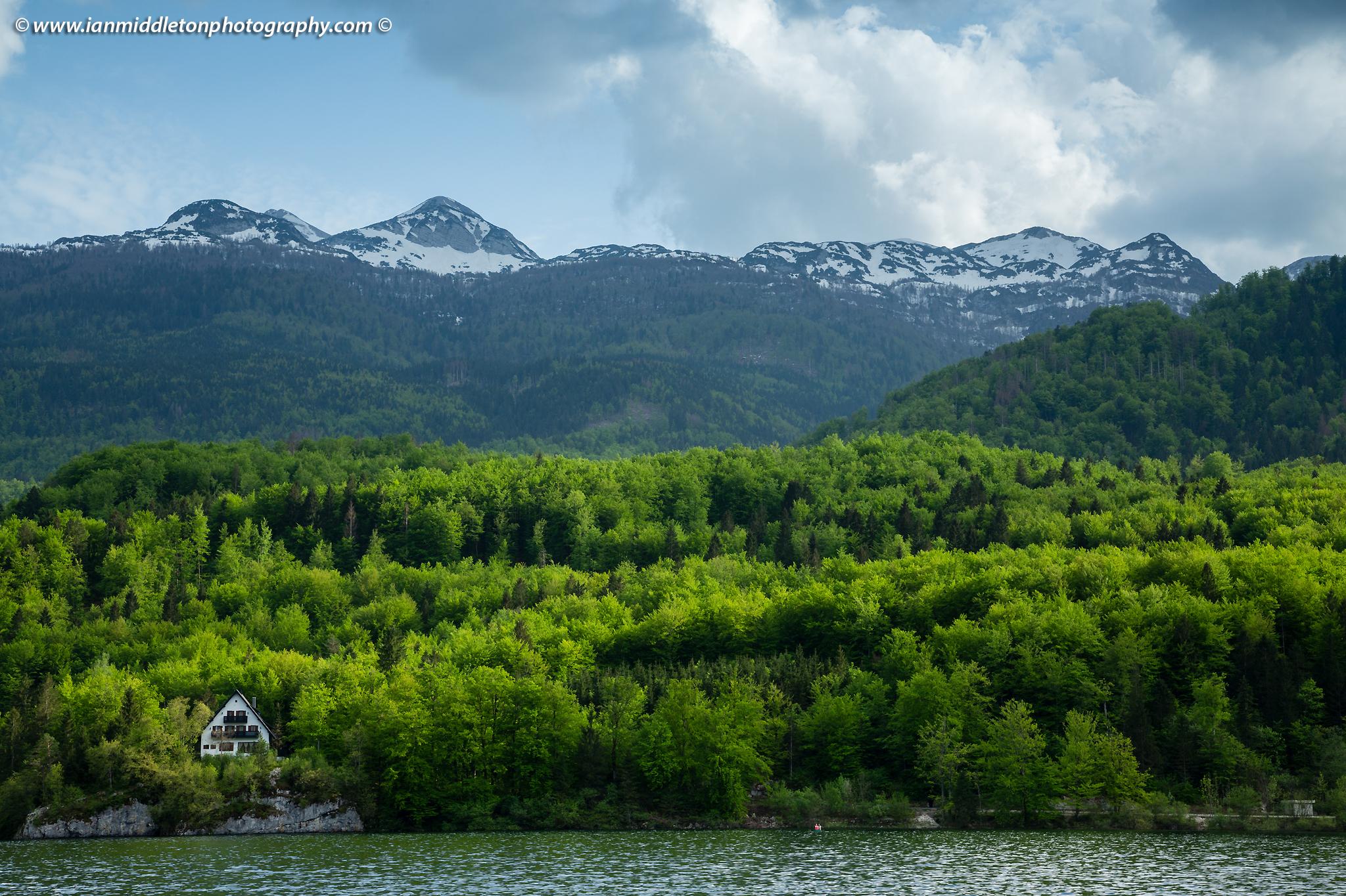 Late Spring greens at Lake Bohinj, Triglav National Park, Slovenia. View across the lake to POČITNIŠKI DOM NA SKALCI, MNZ - Ministrstvo za notranje zadeve RS