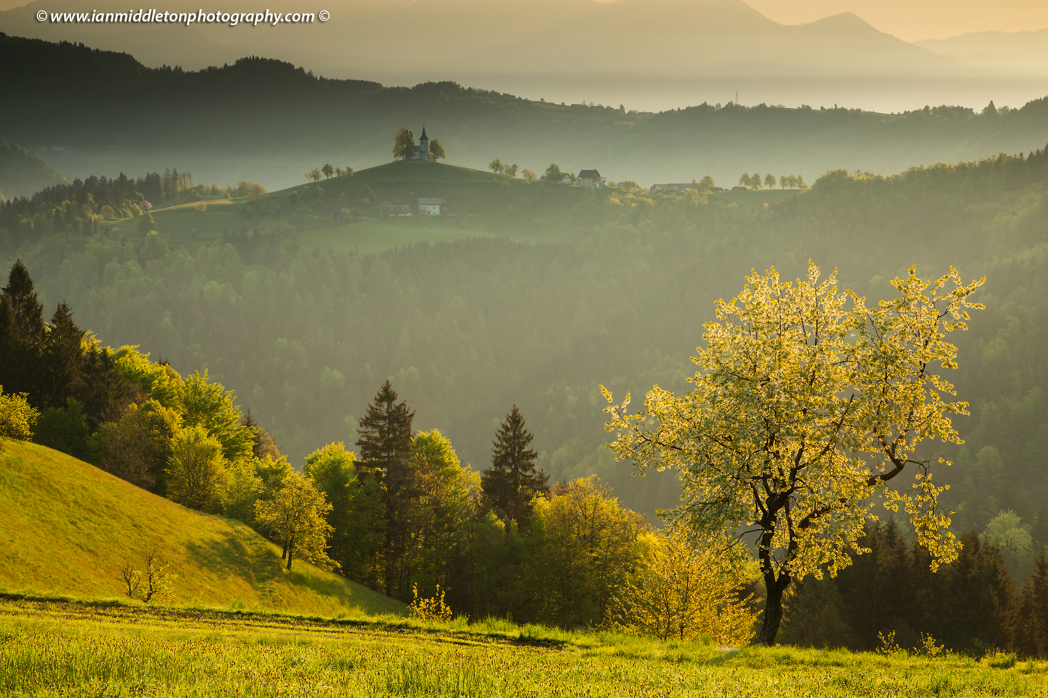 Early morning view from Rantovše hill across to Sveti Tomaz nad Praprotnim (church of Saint Thomas) and the Kamnik Alps, Slovenia.