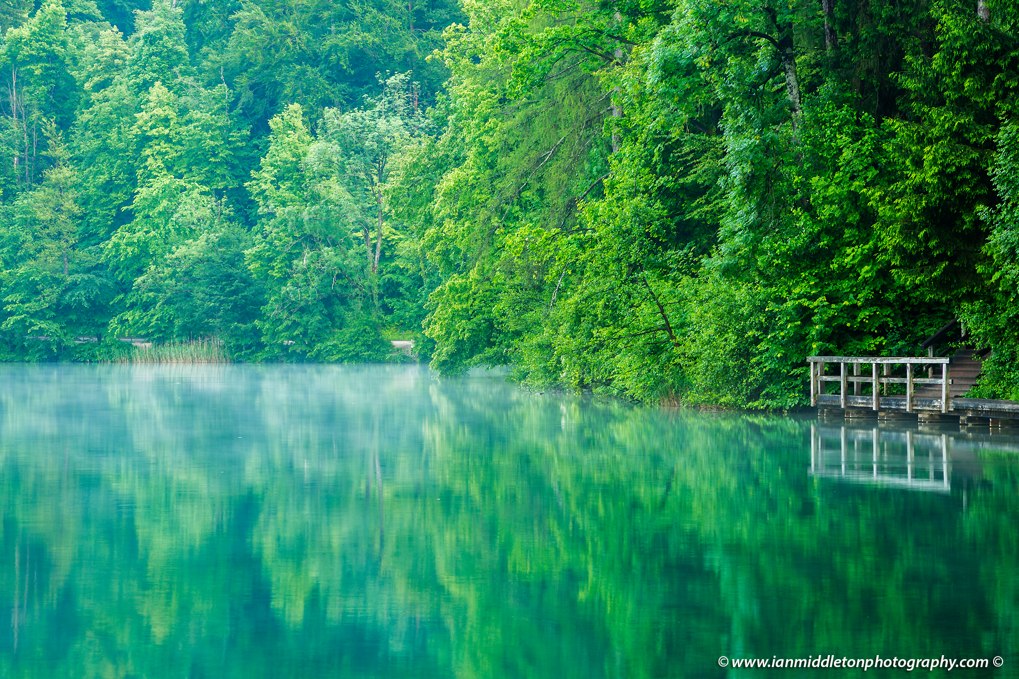 Spring greens at Lake Bled, Slovenia.